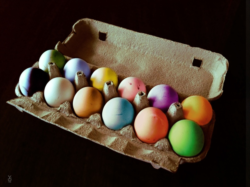 Colors of eggs